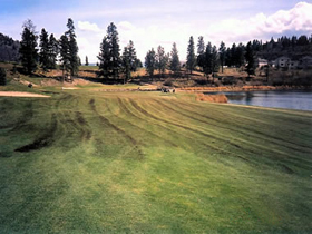 Shannon Lake Golf Course Before Natures Gold Fertilization